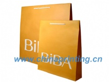 High Quality  paper bag printing with nylon handle SWP11-13