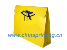 High Quality Gift paper bag printing in China SWP11-21