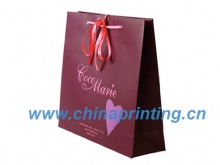 High quality gift art paper bag printing in China SWP11-12